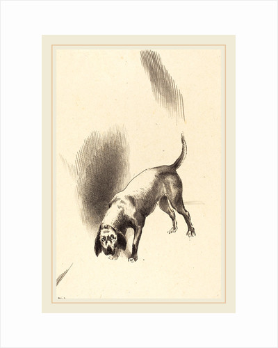 The Dog, 1896 by Odilon Redon
