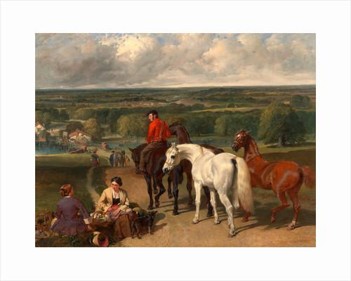 Exercising the Royal Horses by John Frederick Herring
