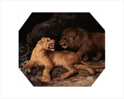 Lion and Lioness by George Stubbs