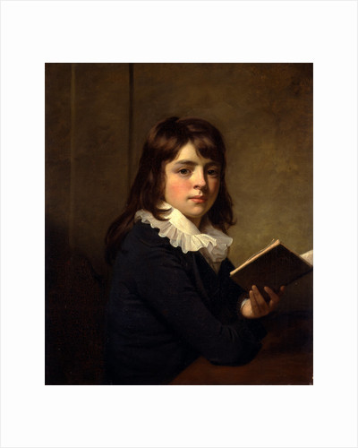Portrait of a Boy An Unknown Boy by Sir William Beechey