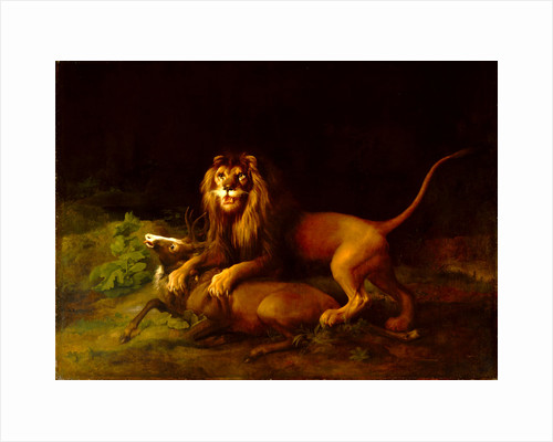 A Lion Attacking a Stag Lion devouring a stag by George Stubbs