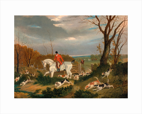 The Suffolk Hunt: Going to Cover near Herringswell The Suffolk Hunt - Going to Cover near Herringswell by John Frederick Herring