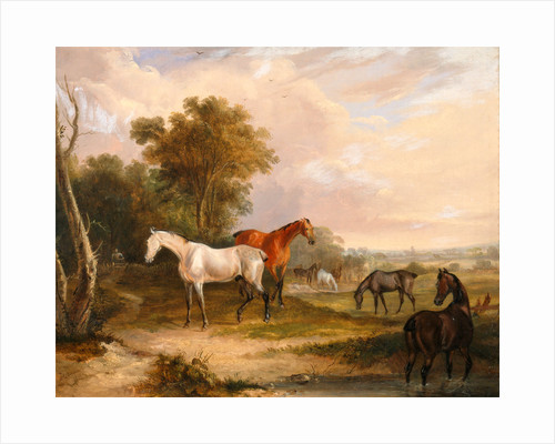 Horses Grazing: a Grey Stallion Grazing with Mares in a Meadow by Calcraft Turner