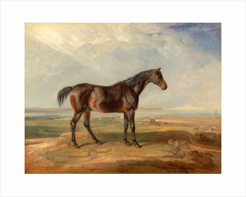 Dr. Syntax, a Bay Racehorse, Standing in a Coastal Landscape, an Estuary Beyond by James Ward