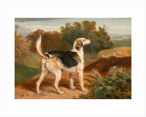 Ravager, One of the Lambton Hounds A Foxhound in a Landscape by James Ward