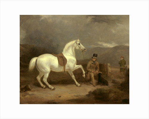 Grey Shooting Pony, Probably the Property of Johnston King by Thomas Woodward