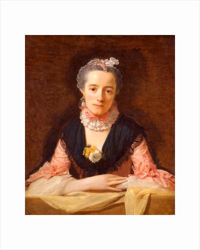 Lady in a Pink Silk Dress by Allan Ramsay