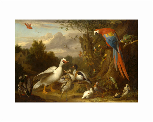 A Macaw, Ducks, Parrots and Other Birds in a Landscape by Jacob Bogdani