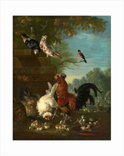Domestic cock, hens, and chicks in a park by Peter Casteels