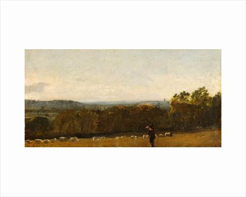 A Shepherd in a Landscape looking across Dedham Vale towards Langham by John Constable