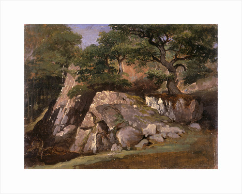 A View of the Valley of Rocks near Mittlach (Alsace) by James Arthur O'Connor