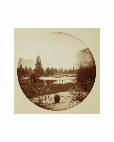 Down the Valley, Yosemite by Carleton Watkins