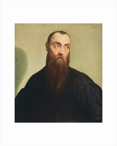 Portrait of a Bearded Man by Jacopo Bassano