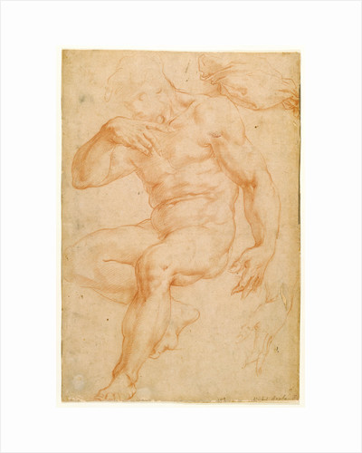 Studies of a Male Nude, a Drapery, and a Hand by Giorgio Vasari
