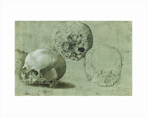 Study of Three Skulls (recto), Architectural Study (verso) by Anonymous