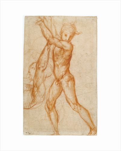 Study of a Nude Boy, Partial Figure Study (recto), Study of a Seated Man (verso) by Pontormo