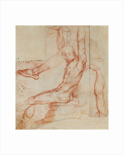 Study of a Man with Various Sketches (recto), Study of a Man's Draped Leg (verso) by Polidoro da Caravaggio