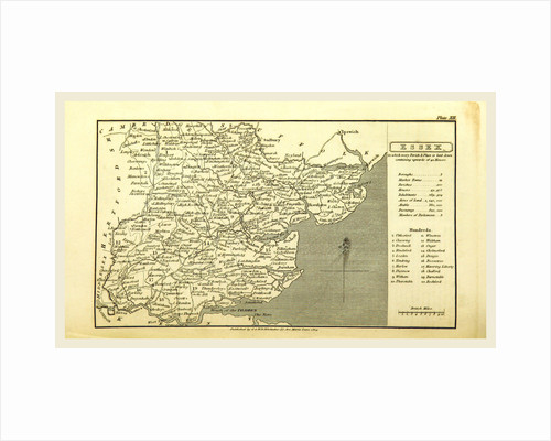 A Topographical Dictionary of the United Kingdom, Essex by Anonymous