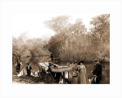 On the Tomoka, Jackson, Tourist trade, Rivers, Alligator hunting, United States, Florida, Tomoka River, 1880 by William Henry