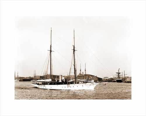 Wild Duck (Steam yacht), 1891 by Anonymous