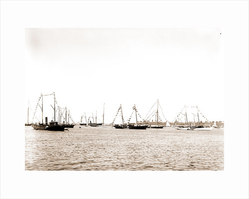 N.Y.Y.C. fleet, Vineyard Haven, August 7, '92, New York Yacht Club, Yacht clubs, Massachusetts, Vineyard Haven, 1892 by Anonymous