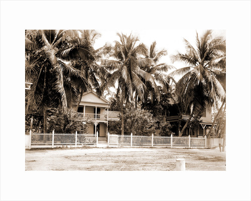 Residence in palm grove, Key West by Anonymous