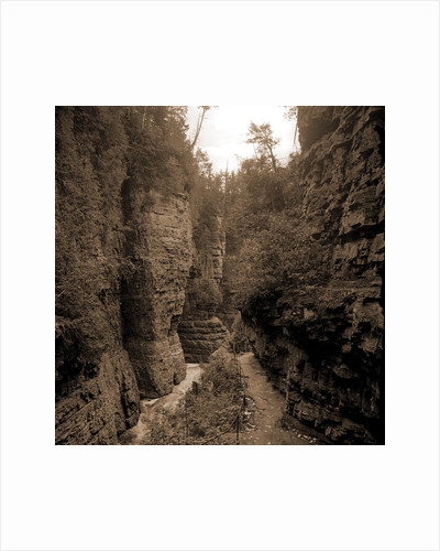 Column Rocks from below, Ausable Chasm by Anonymous