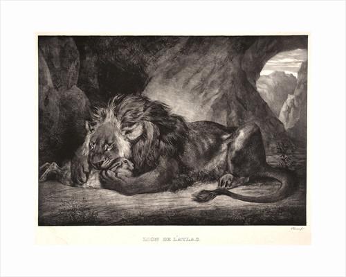 Lion of the Atlas Mountains (Lion d'Atlas), 1829 by Eugène Delacroix