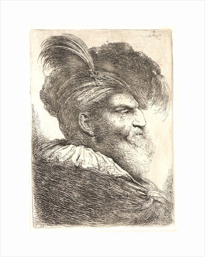 Bearded Man Wearing a Bonnet with a Plume, ca. 1648-1650 by Giovanni Benedetto Castiglione