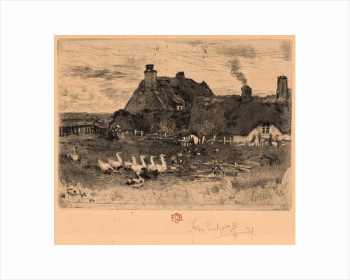 Ducks and Cottage, 19th century by Félix Hilaire Buhot