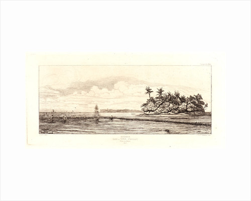 Océania: Fishing, near Islands with Palms in the Uvea or Wallis Group (Océanie: Ilots à Uvea), 1863 by Charles Meryon