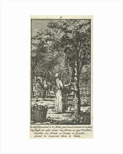 September men and women picking fruit in an orchard. by Jan Caspar Philips