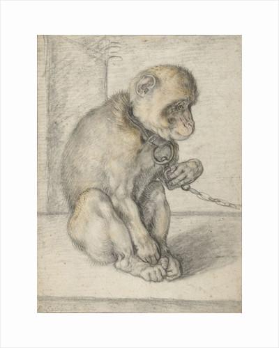 Monkey on a Chain by Hendrick Goltzius