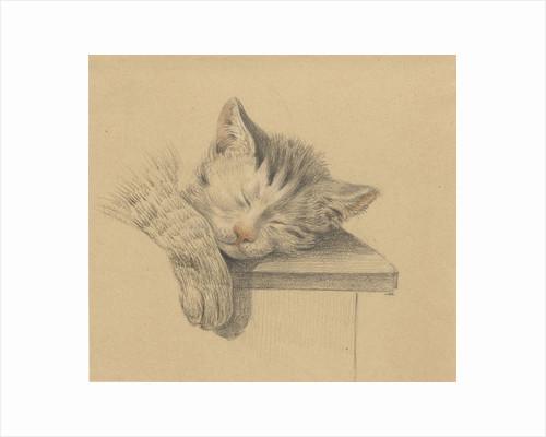 A sleeping cat by Jean Bernard