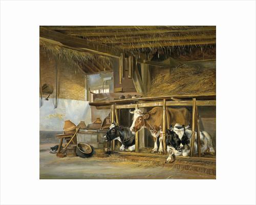 Cows in a Stable by Jan van Ravenswaay