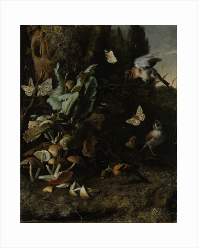 Animals and Plants by Melchior d' Hondecoeter