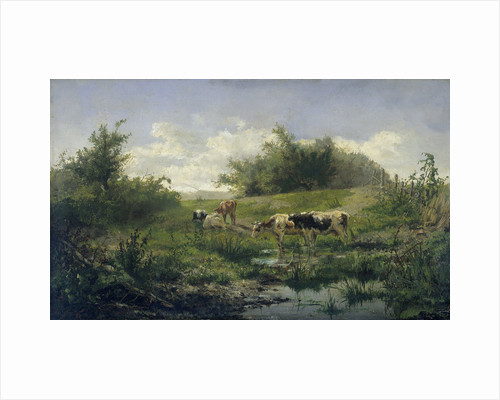 Cows in a Puddle by Gerard Bilders