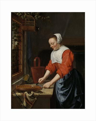 The servant girl by Willem van Odekercken