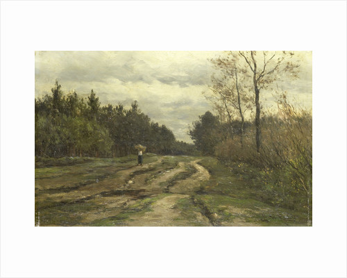 Country road near Laren, Noord-Holland by Willem Roelofs I