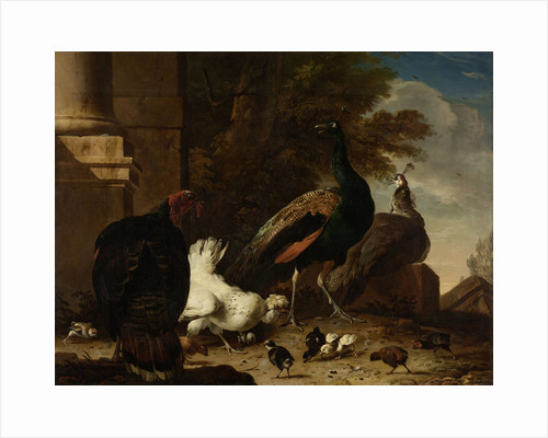 A Hen with Peacocks and a Turkey by Melchior d' Hondecoeter