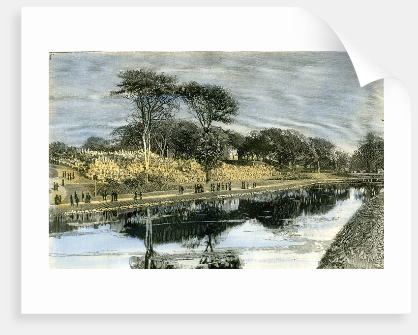 Aberdeen the Duthie Park 1885 UK by Anonymous