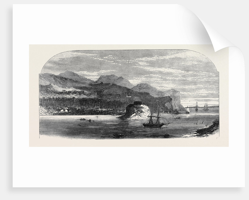 The Fiji Islands: Levuka the Capital 1873 by Anonymous