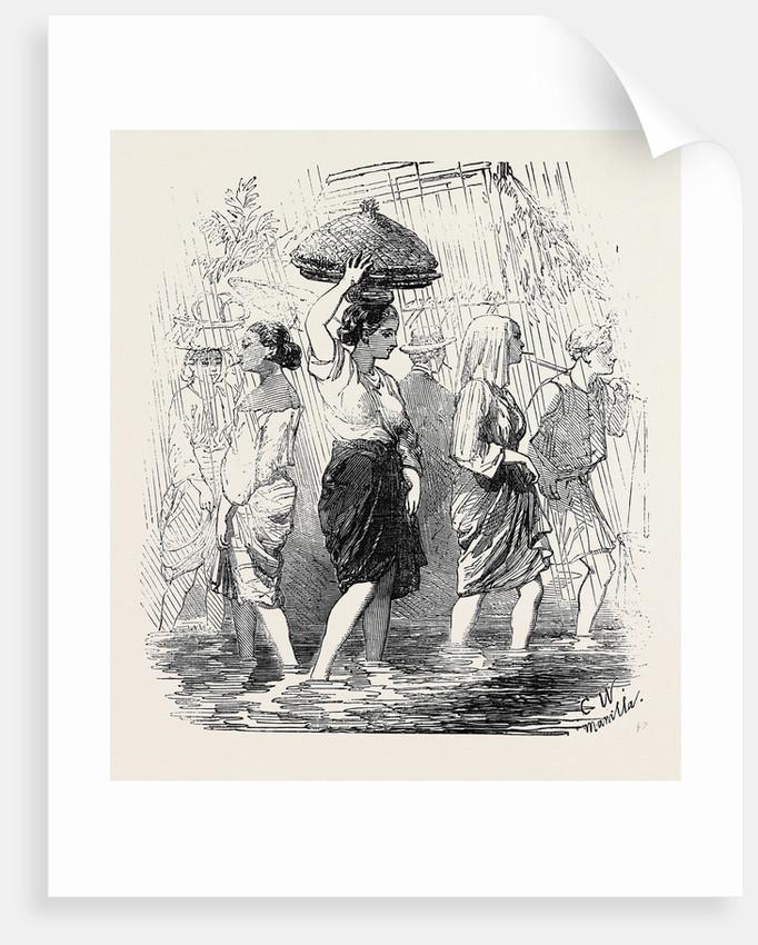 The Rainy Season Manilla by Anonymous