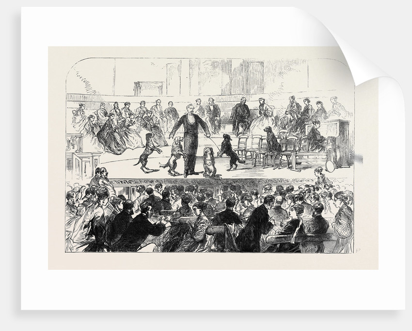 Christmas Soiree at the Hanover Square Rooms of the Association in Aid of the Deaf and Dumb 1869 by Anonymous