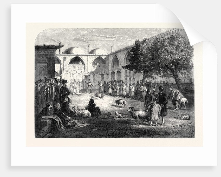 Ram-Fighting at the Persian Khan Constantinople 1866 by Anonymous