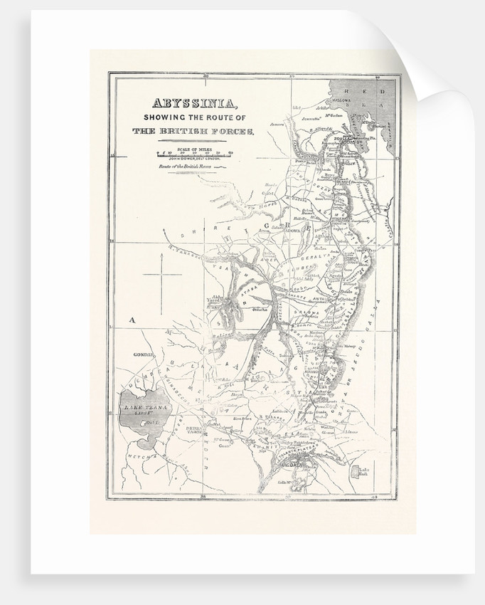 Abyssinia Showing the Route of the British Forces 1868 by Anonymous