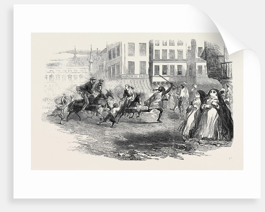 Donkey Races in Alexandria. by Anonymous