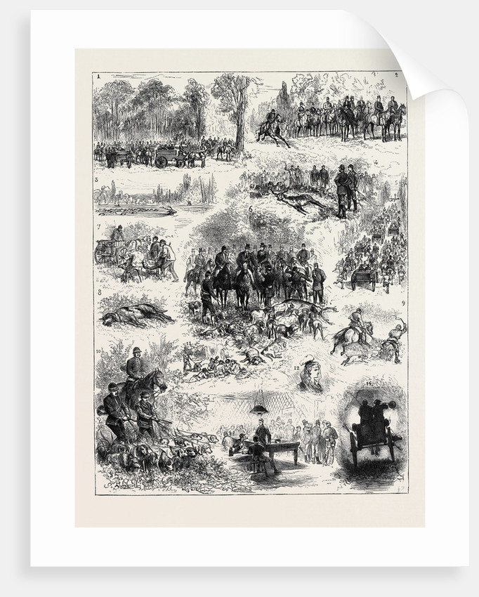 Visit of the Prince of Wales to France, the Stag Hunt at Chantilly by Anonymous