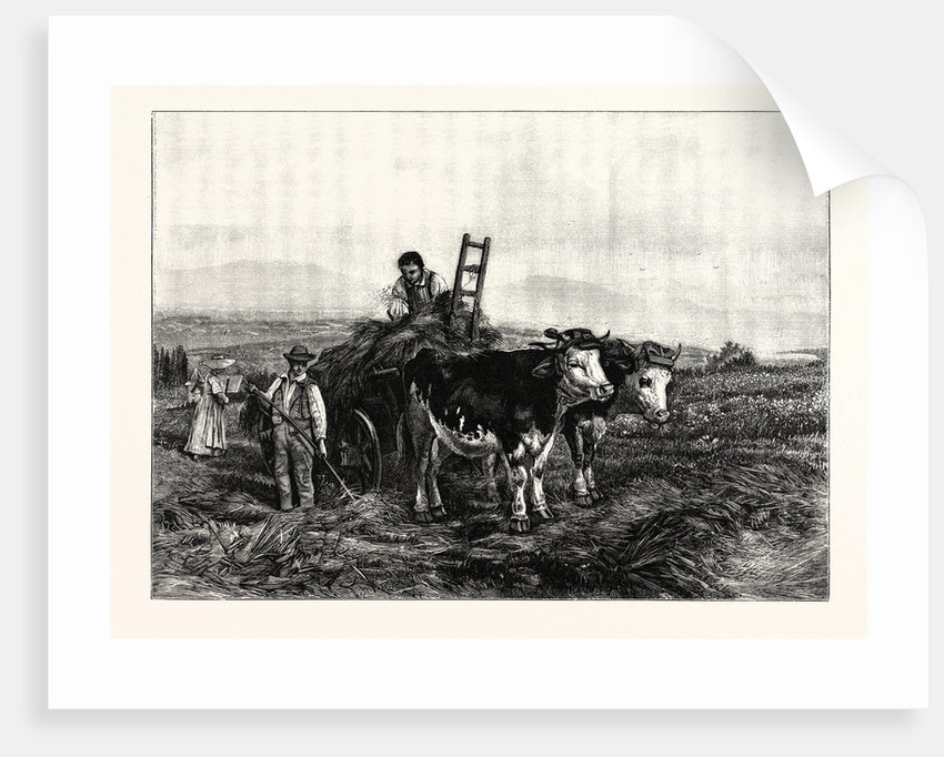 Hay-Making in Switzerland by Anonymous