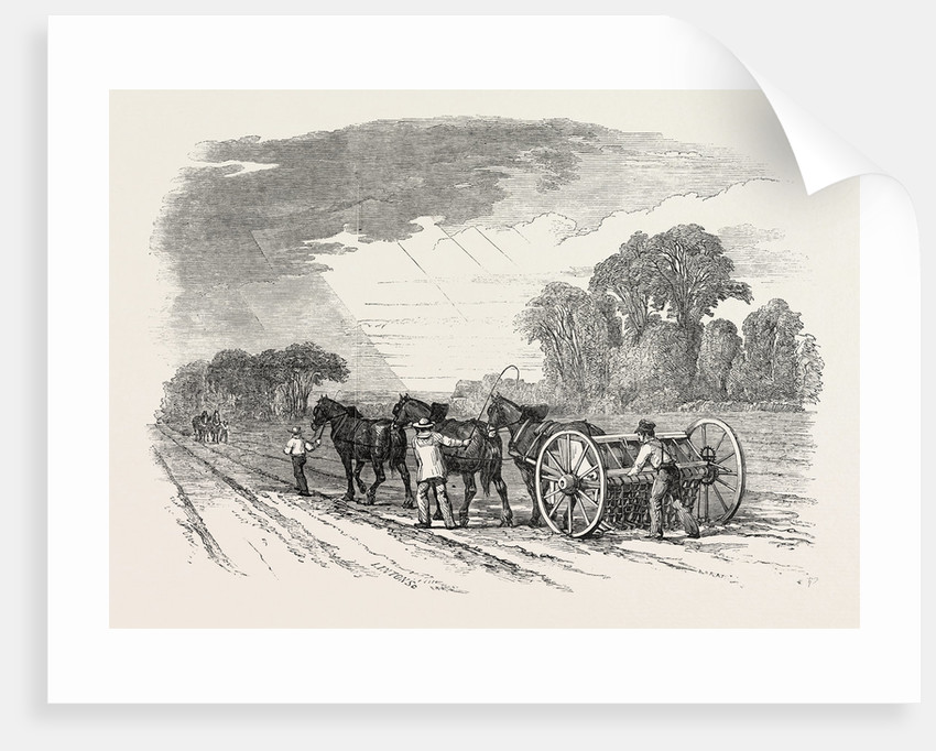 Agricultural Pictures: Drilling and Harrowing, 1846 by Anonymous